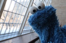 Delicious Shower Thoughts with Cookie Monster