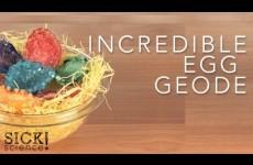 EGGcellent Experiments