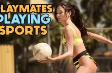 Sexy Sports